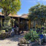 Hübsches kanarisches Anwesen mit idyllischem Garten im nordwesten von La Palma/Tijarafe.